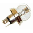 Miniature Light Bulb 55W R2