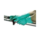 Nitrile Glove Nitrile Unlined Size 11 - 21012